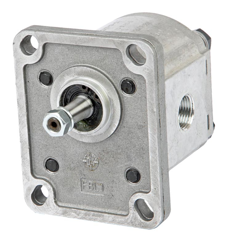Polaris PLP Group 1 Gear Pump BSP Ports