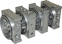 Universal central manifold